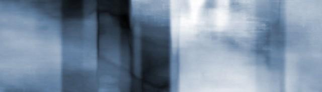 Indigo Aeonium Image